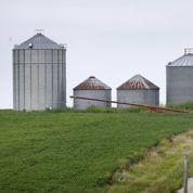 Des récoltes trop fructueuses encombrent les agriculteurs américains