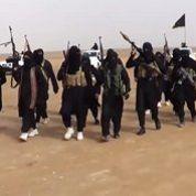 L'État islamique appelle à tuer des «méchants et sales Français»
