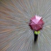 Les nappes phréatiques ont profité du mauvais temps estival