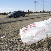 Le gouvernement veut bannir les sacs plastiques