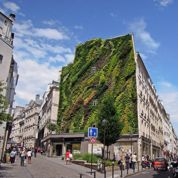 Les Parisiens veulent plus de murs et de façades végétalisés