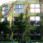 L'installation de murs végétaux, priorité des parisiens