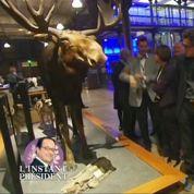 Zapping TV : François Hollande complètement paumé au musée