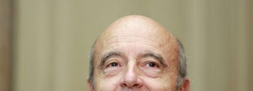En tête des sondages, Alain Juppé pourra-t-il vaincre la malédiction des favoris ?