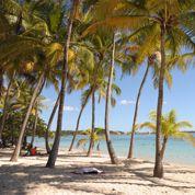 Des cours de tourisme pour les élèves de Guadeloupe