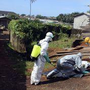 Le nom de domaine Ebola.com mis en vente à 150.000 dollars