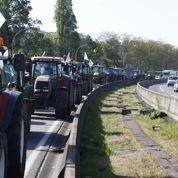 Les agriculteurs veulent plus de «Made in France» dans les assiettes