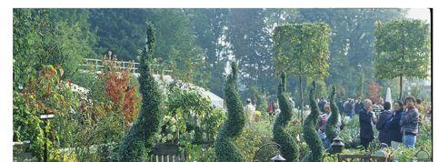 Journées de Courson: aux arbres citoyens !