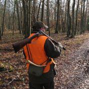 Les accidents de chasse en baisse en 2014
