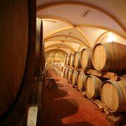 La France retrouve sa première place de producteur mondial de vin