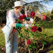 Élégante Églantine: le chic féminin côté jardin