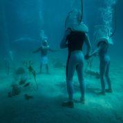À Bora Bora, mariage à quatre mètres sous l'eau