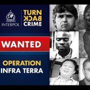 Interpol traque des criminels environnementaux