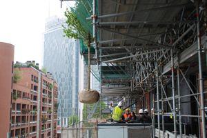 L'installation des plantes sur les façades a commencé en juin 2012. Crédit photo: Francesco de Felice