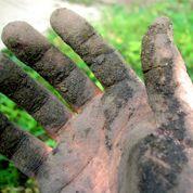 Comment alléger une terre grasse ?