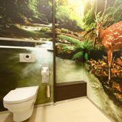 La SNCF rénove ses toilettes, plus design... et plus chères