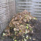 Quels produits bios pour réduire l'acidité du sol ?