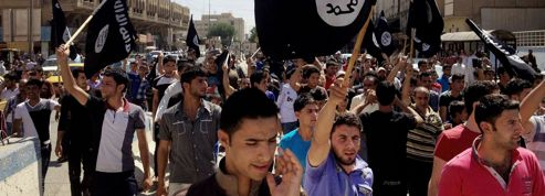 Djihad: psychiatres et spécialistes de la lutte contre les sectes sollicités