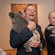 G20 : le câlin d'Obama et Poutine avec un koala a coûté 16.000 euros aux Australiens