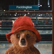 Paddington, l'ourson qui peut rapporter gros au groupe Canal+