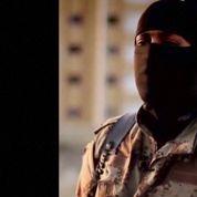 La déchéance de nationalité pour les djihadistes en débat à l'Assemblée
