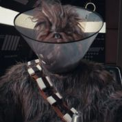 Star Wars VII : la parodie carte vermeil de James Franco