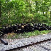Mon sol a-t-il été pollué par des traverses de voie ferrée ?