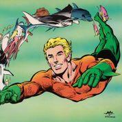 Jeff Nichols, le réalisateur de Mud ,pourrait réaliser Aquaman