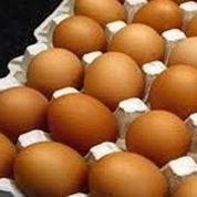 Les dons d'œufs aux Restos du cœur bientôt défiscalisés
