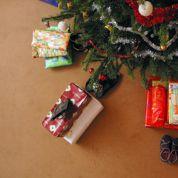Adoptez un sapin de Noël pour en profiter sans le jeter après