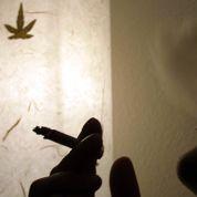 Une étude de Terra Nova relance le débat sur la légalisation du cannabis