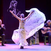 Flamenco: amour, rage et âpreté