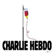 Charlie Hebdo : les 20 dessins les plus émouvants