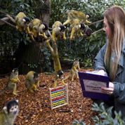Le zoo de Londres fait l'inventaire de ses pensionnaires