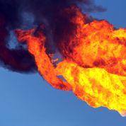 Les ventes de gaz pénalisées par le climat en 2014