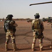 Les anciens militaires djihadistes sont «d'une extrême rareté»