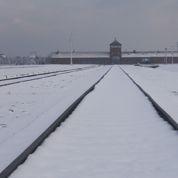 Auschwitz: «Ici, l'homme était considéré comme une matière première»