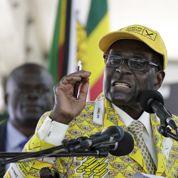 Pour ses 91 ans, Robert Mugabe mangera des éléphants