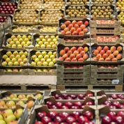 Les agriculteurs incités à réduire le gaspillage alimentaire