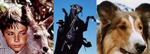 Top 10... des animaux stars de la télévision !