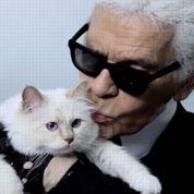 Karl Lagerfeld : « Choupette est mon héritière »