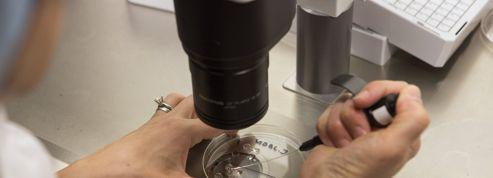 États-Unis : une bactérie mortelle s'échappe d'un laboratoire hyper sécurisé