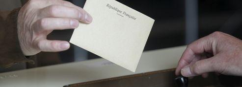 Quel est le profil des candidats aux départementales?