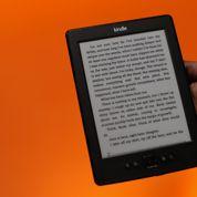 TVA sur le livre numérique : les liseuses devraient trinquer
