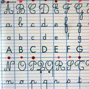 Agence de la langue française : les conseils d'un linguiste à Manuel Valls