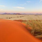 Les 10 sites et attractions incontournables au Botswana