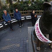 Tokyo : l'histoire d'amour d'un chien et de son maître immortalisée dans le bronze