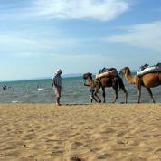 Le tourisme, un secteur clé mais fragilisé de l'économie tunisienne