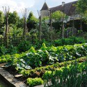 17millions de jardiniers… Et vous, et vous, et vous!