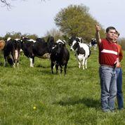 Départementales: 3,3% des candidats sont agriculteurs